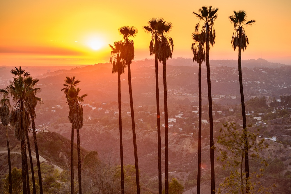 Real estate investments in California